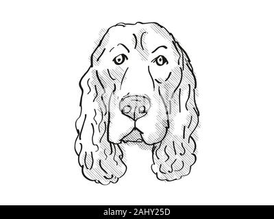 Retro cartoon style drawing of head of a Field Spaniel, a domestic dog or canine breed on isolated white background done in black and white. - Stock Photo