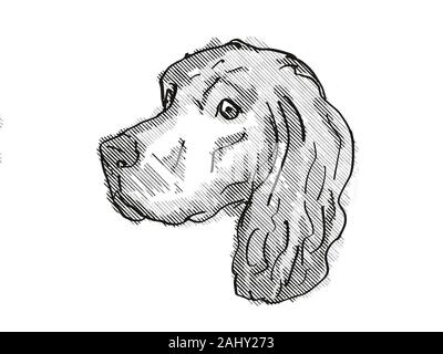 Retro cartoon style drawing of head of a Gordon Setter, a domestic dog or canine breed on isolated white background done in black and white. - Stock Photo