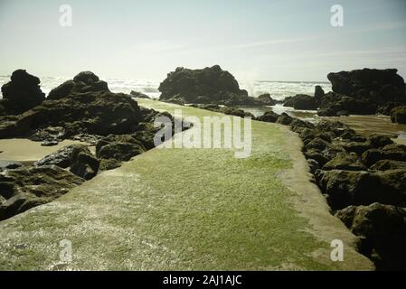 Causeway leading out to the ocean in south-west France, by Pasakdek - Stock Photo