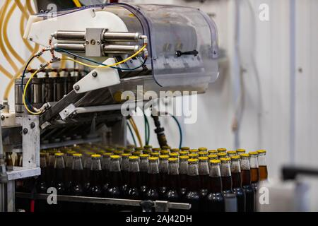 Dark beer glass bottles with yellow cap, capping bottle machine, conveyor belt line, Craft brewery factory microbrewery bottling - Stock Photo