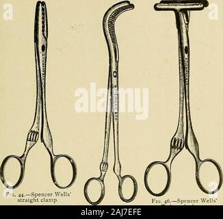 The surgical assistant, a manual for students, practitioners, hospital internes and nurses . Fig. 43.—Serrefins. Pie. 42.—Peans artery {creeps. Surgical Instruments. 343. Fig. 44.—Spencer Wellsstraight clamp. - Stock Photo