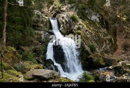 Germany's most popular and highest waterfall - Triberg waterfall and nature in Black Forest - Stock Photo