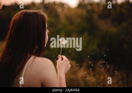 Carefree teenage girl blowing dandelion at sunset in summer - Stock Photo
