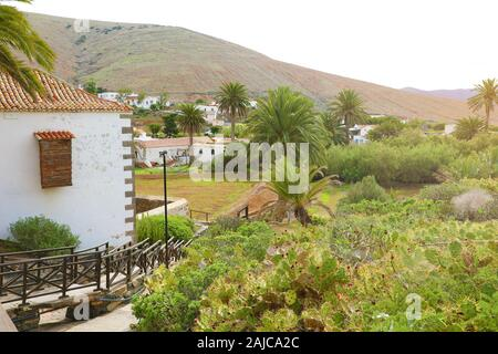Cactus garden in the small town of Betancuria, Fuerteventura, Canary Islands - Stock Photo