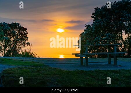 Sunrise from slopes Mount Maunganui eastward view between trees over golden sea and sky. - Stock Photo