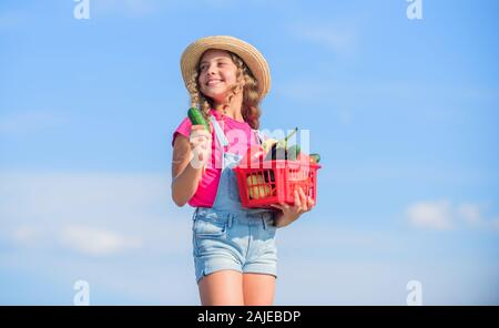 Gathering vegetables in basket. Village rustic style. Sunny day at farm. Selling homegrown food concept. Organic vegetables. Natural vitamin nutrition. Vegetables market. Girl cute child farming. - Stock Photo