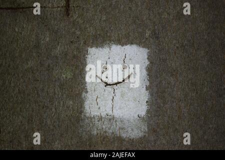 White rectangle or square with black smiley face painted on a tree trunk. - Stock Photo