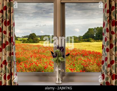 Looking through a window onto a poppy field in spring. Rural scene from inside a home. - Stock Photo