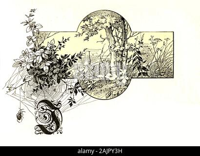 Beautiful front chapter decoration with rural scene: a faraway village, sunrise , tree, foliage, spiders and capital letter I in old German style