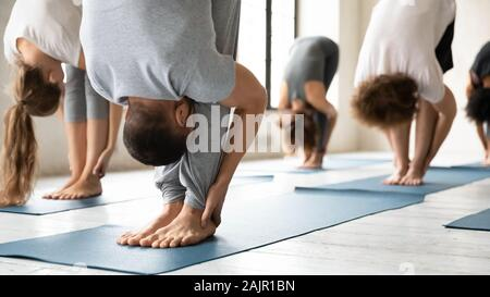 People practicing yoga at group lesson, standing in uttanasana pose