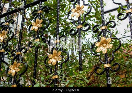 Twisted iron fences painted black. There's a golden flower pattern in the middle. There are trees behind the fence. - Stock Photo
