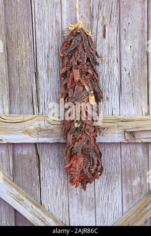 Dried Chilies, Chili Ristras, Madrid, former mining town in the Ortiz Mountains, Turquoise Trail, New Mexico, USA - Stock Photo
