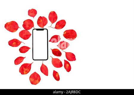 Festive floral flat lay composition mobile phone with blank screen and colorful eucalyptus leaves on white background, top view. - Stock Photo