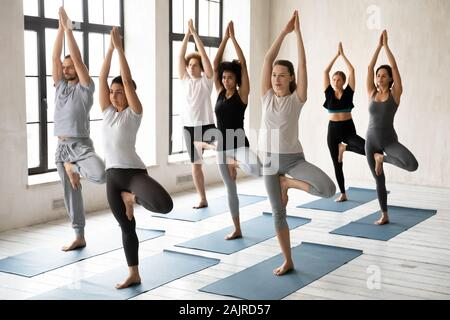 Diverse young people practicing yoga, standing in Tree pose - Stock Photo