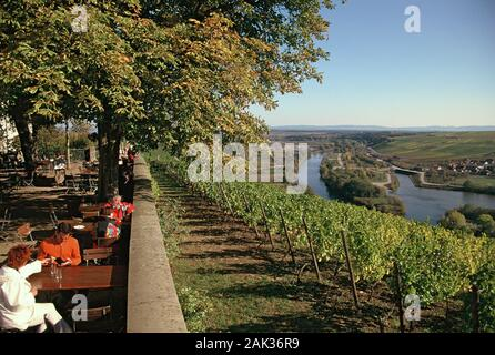 View of the river Main seen from the tavern of the Vogelsburg in Volkach (Bavaria), Germany.(undated picture) | usage worldwide - Stock Photo