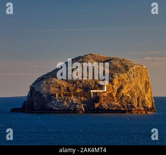 A summer time view of Bass Rock at dawn from North Berwick, East Lothian, Scotland, United Kingdom - Stock Photo