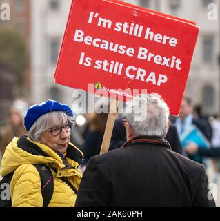 London UK 7th Jan. 2020 Pro and anti brexit protesters outside the Houses of Parliament Credit Ian DavidsonAlamy Live News Stock Photo