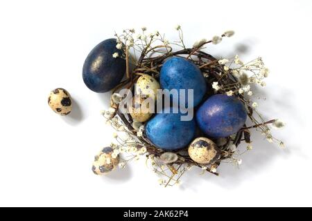 Decorative blue easter eggs in a nest on a white background. - Stock Photo