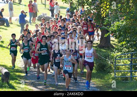 Wappingers Falls, New York, USA - 29 September 2019: The lead pack of boys rounding a corner during a high school cross country race.