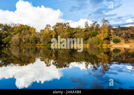 Colour landscape photograph looking over still pond with tree-line in distance reflected in water, taken on Alder hills nature reserve, Poole, Dorset - Stock Photo