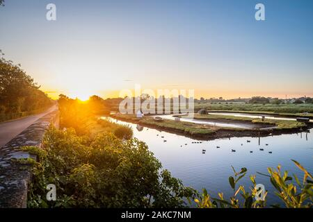 France, Loire-Atlantique, Briere Regional Natural Park, Saint-Joachim in the heart of Briere marshes - Stock Photo
