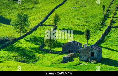 Cabana pasiega buildings and meadows, Miera Valley, Valles Pasiegos, Cantabria, Spain. October, 2017. - Stock Photo