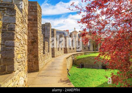 Ghent, Belgium, inner yard of Gravensteen castle or Castle of the Counts, spring trees against cloudy blue sky - Stock Photo