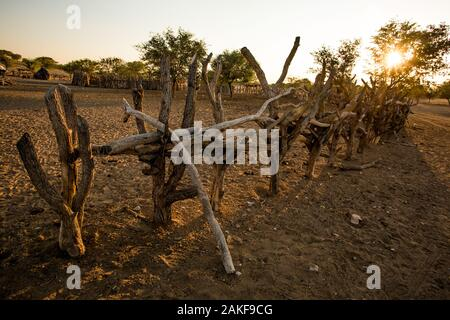 The wooden fence around a Himba village , Kaokoland, Kaokoveld, Namibia - Stock Photo