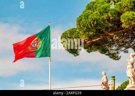 Green and red Portuguese flag blows in the wind with a blue sky background and pine tree. Photographed in Belem, Lisbon, Portugal - Stock Photo