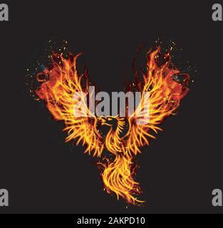 Fire burning Phoenix Bird with black background. vector - Stock Photo