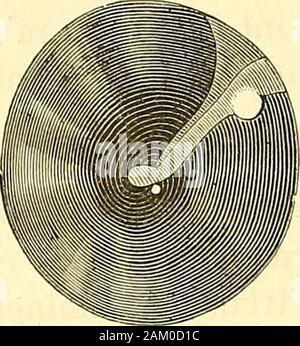Traité d'anatomie topographique avec applications a la chirurgie . 10 - Stock Photo