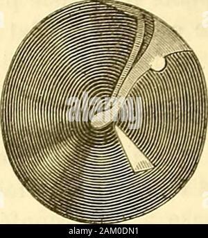 Traité d'anatomie topographique avec applications a la chirurgie . - Stock Photo