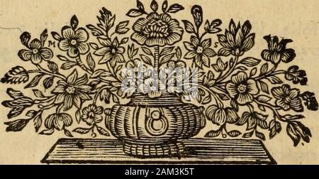 Josephi Pitton Tournefort Aquisextiensis, doctoris medici Parisiensis ..Institutiones rei herbariae . lier. « • ifs> j^ OpuLUseft plantae genus, flore A amentaceo -, plurîmis nempe folio- lis C apicibus donatis conftante/ed fterili : teneri enim frudiis B innafci fo-lent lis Populi fpecicbus quae floribus carent, fpicati, plurimis foliolis com-pofiti D, E, F, fub quibus latet campana qnœdam G embryonem H comple-t« J^. B, t. 160. Pofulus alba Dod. Pempt. ^ jj. Peuplier blanc.Populus alba, rainoiibus foliis Lob. Icon. 15»3. Populus alba , folio minore f. B. 1. 160,Populus nigraC. B. Pin. 415) - Stock Photo
