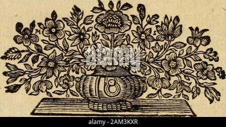 Josephi Pitton Tournefort Aquisextiensis, doctoris medici Parisiensis ..Institutiones rei herbariae . nella maxlma, fpicâ, longa, rubra Mor. H. R, Bief, Pimpinella magglore, fpiccata, di Ca* nada Zan. 16 j,Pimpinella maxima, Canadenfîs Corn, 174. Sanguiforha major, Americana, flore alboffpicato BrojfPimpinella Agrimonoides , odorata H. R. Par. Pimpinella Agrimonoîdes Mor. H. R. Bief. Bocc. Rarior. Plant. fS,Pimpinella fanguiforba, minor, hirfuta C. B. Pin. 160. Sanguiforha mînorj. B, j. Part. 2. lis. Pîmpinella fanguiforba Dod.Pempt. 1 oj.Pimpinella fanguiforba, minor, l^vis C, B. Pin. 160.Pim - Stock Photo