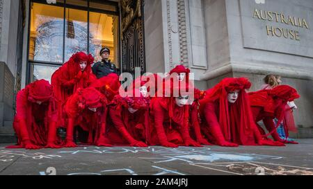 extinction rebellion protest outside australia house the high commission in london regarding climate change resulting in severe wild bushfires 2am4jrj - 15+ Australia House London Images  Pics