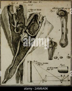 Acta Physico-Medica Academiae Caesareae Leopoldino-Carolinae. . - Stock Photo