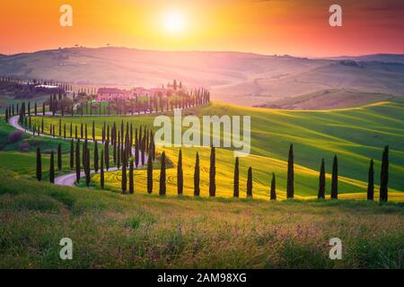 Well known Tuscany landscape with grain fields, cypress trees and houses on the hills at sunset. Summer rural landscape with curved road in Tuscany, I - Stock Photo