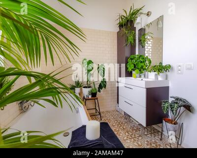 Small tiled bathroom with a bath and multiple green potted plants such as palm tree and pancake plant creating an urban jungle feeling - Stock Photo