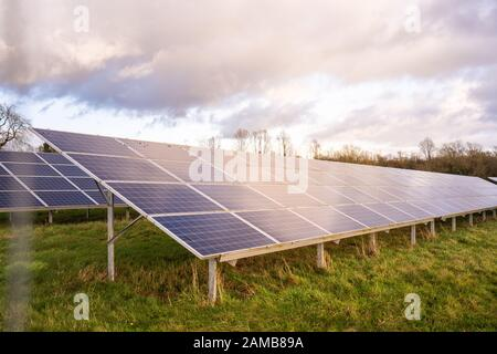 Ground view of a solar farm in Staffordshire, renewable, sustainable energy due to climate change, natural energy Solar panels in the countryside - Stock Photo