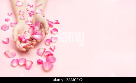 The woman hands hold rose flowers on a pink background. A thin wrist and natural manicure. Cosmetics for a sensitive skin care. Natural petal