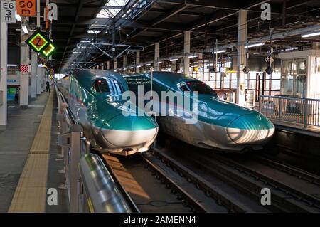 E5 Series Shinkansen bullet train in Morioka JR railway station, Japan, Asia. Modern transportation, fast travel, Japanese travelers, Asian commuters - Stock Photo