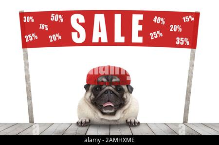 frolic smiling merchant pug puppy dog with hat and red promotional  banner sign with text sale % off, selling with discount, isolated on white backgro - Stock Photo
