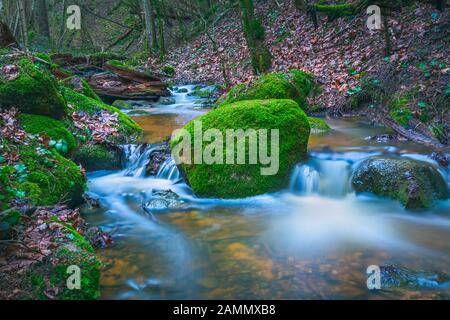 Green landscape with small river in the forests