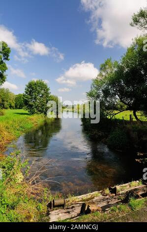 The river Avon at Normanton, near Amesbury, Wiltshire. - Stock Photo