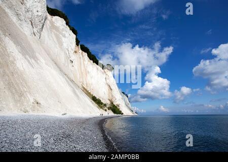 Moens Klint chalk cliffs, Møn, Mons Klint, Moen, Baltic Sea, Denmark, Scandinavia, Europe Stock Photo