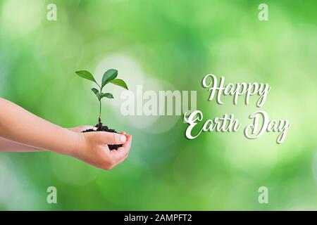 Children's hands holding small green plant growing seedlings on natural green bokeh background. Earth Day concept. - Stock Photo