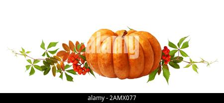 Ripe pumpkin, rowanberries and autumn colorful leaves isolated on white background. Halloween arrangement. - Stock Photo