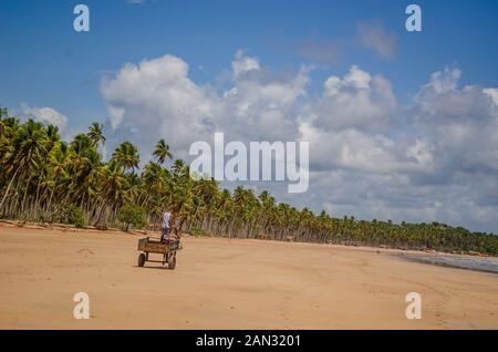 Landscapes on 'Boipeba Island', beaches in Bahia, Brazil - Stock Photo