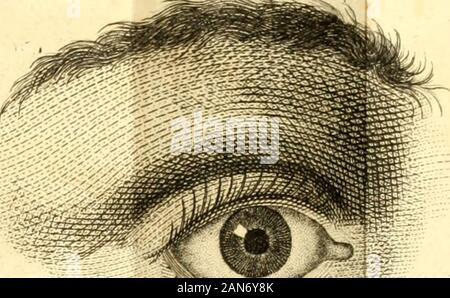 Praktische Abhandlung über die Augenkrankheiten, oder, Erfahrungen und Beobachtungen über die Krankheiten dieses Organs . •<y // Ta6 1/. - Stock Photo