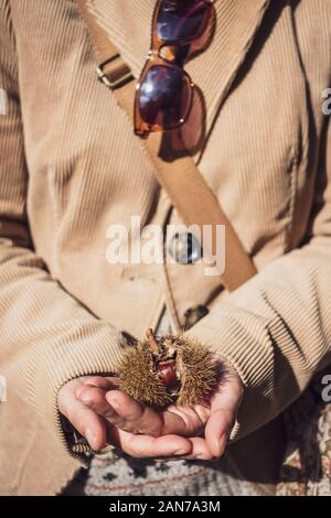 Woman wearing a brown corduroy jacket holds a chestnut on her hands - Stock Photo